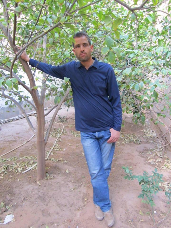 HAMZIN